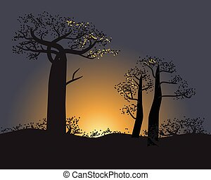 Tranquil silhouette of baobabs on a sunset sky scene in...