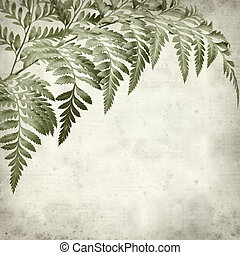 textured old paper background with leatherleaf fern leaves