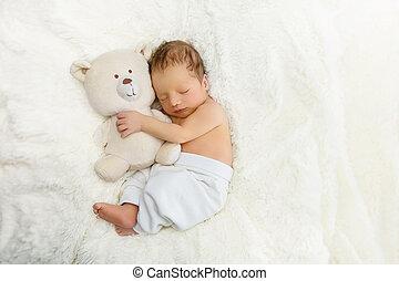 新生, 玩具, 熊