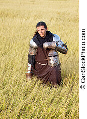 Medieval knight in the field with a helmet