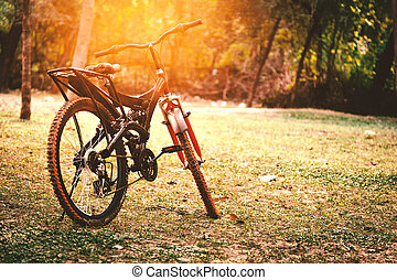 A red and black mountain bicycle. - A red and black mountain...