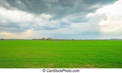 Green field and storm clouds, panor