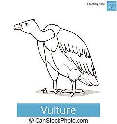 Vulture bird learn birds coloring book vector - Vulture bird...