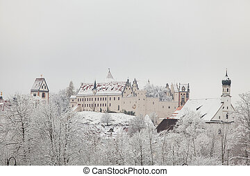 Fussen Castle in winter landscape Germany