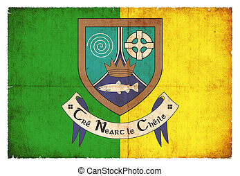 Grunge flag of Meath Ireland - Flag of the Irish county...