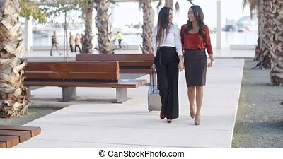 Two stylish elegant women walking together down a sidewalk...
