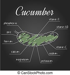 vector illustration of nutrient list for cucumber.