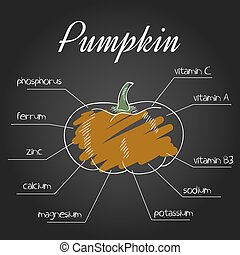 vector illustration of nutrient list for pumpkin.