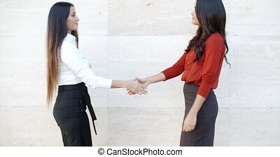 Two stylish women shaking hands outdoors - Two stylish women...