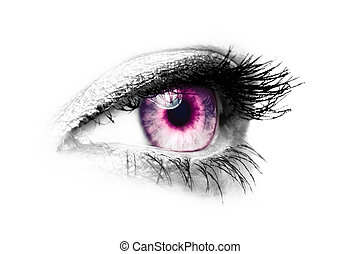 purple female eye - color key - picture of a female eye made...