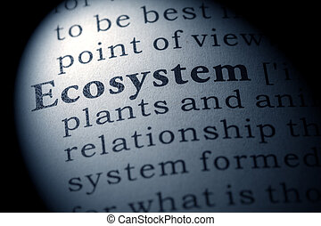 ecosystem - Fake Dictionary, Dictionary definition of the...