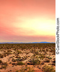 Sonora Desert Sunset - Sunset Sonora desert in central...