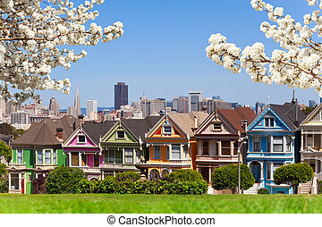 Spring photo of Painted ladies and San Francisco s - Painted...