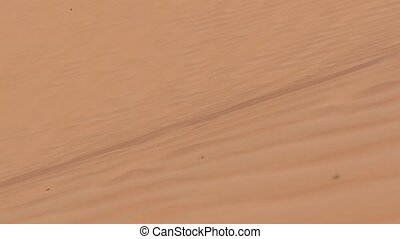Man Walking on a Sahara Desert Dune - An explorer walking on...