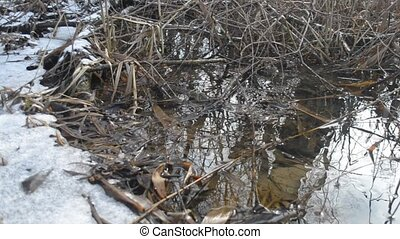 Surface of water flowing in brook with melting ice in spring...