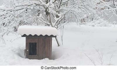 Dog house. Heavy snow falling on background of wooden kennel