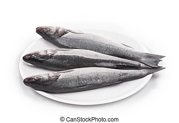 Three fresh seabass fish on plate. Isolated on a white...