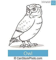 Owl bird learn birds coloring book vector - Owl bird learn...