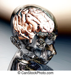 Human Brain - Digital Visualization of a Human Brain
