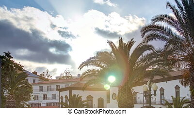 Sunset over houses and palms in Funchal, Madeira, Portugal...