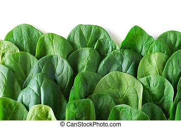 Spinach fresh leafs good as background image
