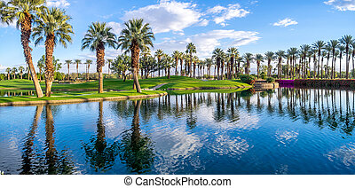 Golf course, Palm Desert California - Palms reflecting in...