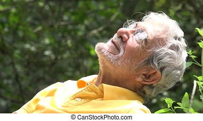 Elderly Old Man Sleeping Outdoors
