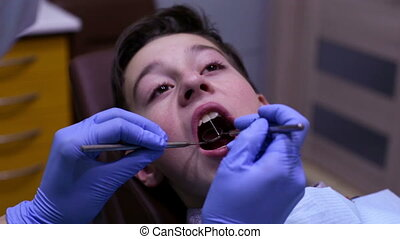 Dentistry. Dental treatment. - Dentist examining teeth of...