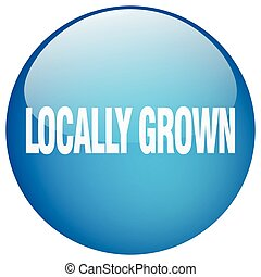 locally grown blue round gel isolated push button