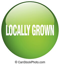 locally grown green round gel isolated push button