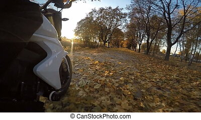 Motorcycle riding the forest road on a sunny autumn day.