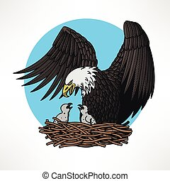 Bald eagle in the nest - Graphic illustration of bald eagle...