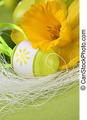 Bright yellow daffodil and green Easter eggs