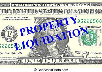 propriedade, liquidação, conceito,