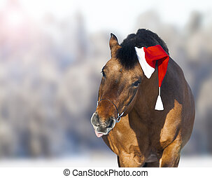 cute horse in santa hat showing tongue, christmas theme