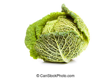 Ripe savoy cabbage covered with dew drops