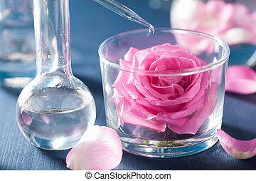 Alquimia, y, aromatherapy, con, rosa, flores, y,...