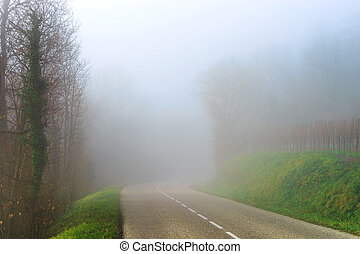 Danger foggy road in the forest, autumn day