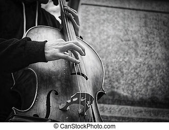 Bass player street musician - Musicians hands playing...