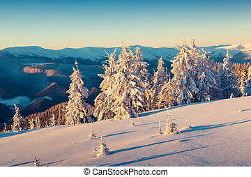 Sunny morning morning in the winter mountains. Retro style.