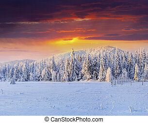 Dramatic winter sunset in the snowy mountains