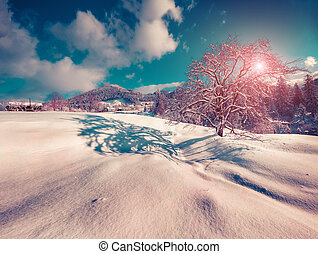 Sunny landscape in the mountain village - Colorful winter...