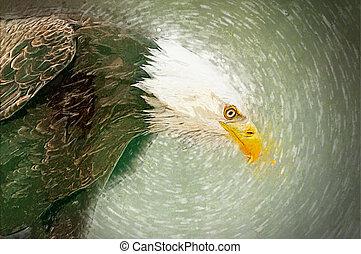 Illustration of eagle head