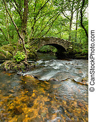 Hisley Bridge on Dartmoor - An old packhorse bridge crossing...