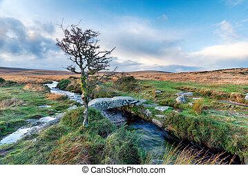Walla Brook on Dartmoor - A small stone clapper bridge over...