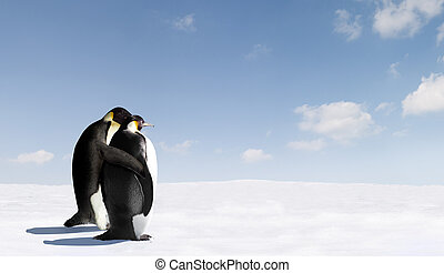 Penguin Love - Penguins in love