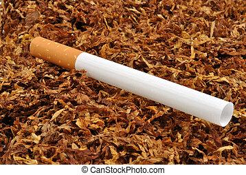 Fazer, seu, próprio, cigarro, orgânica, tabaco