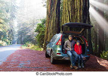 family in redwood forest - family sitting in the car's trunk...
