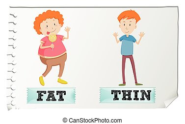 Opposite adjectives fat and thin
