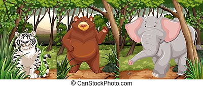 Wildlife animals in the jungle illustration